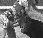 1998 Oscar Higuera gets gored.