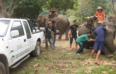 Dr. Kay treated 21 elephants in 8 camps