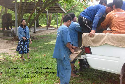 Soraida & Motala watch as Namfon is taken to Infirmary Unit One, away from her mother.