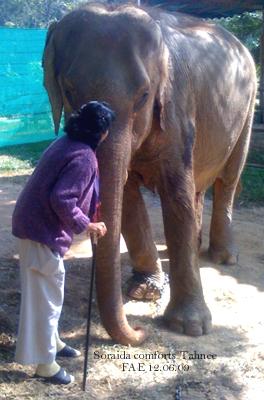 Soraida comforts her dear old friend, Tahnee