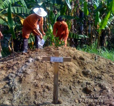 Tahnee's Grave