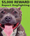 Humane Society Dog Fighting Poster