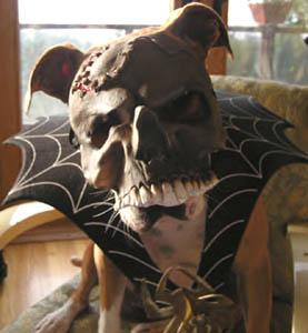 Juju's Halloween Costume 2004