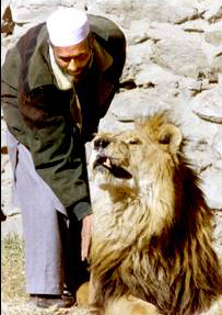 Marjan with his keeper, Sept. 2001. Incredibly beautiful picture