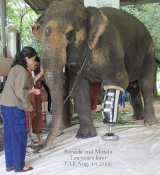 A ten year journey for Soraida and Motala