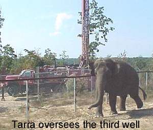 Tarra Oversees The Third Well